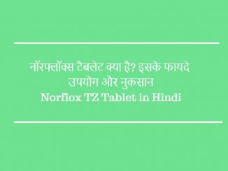 norflox tz tablet in hindi